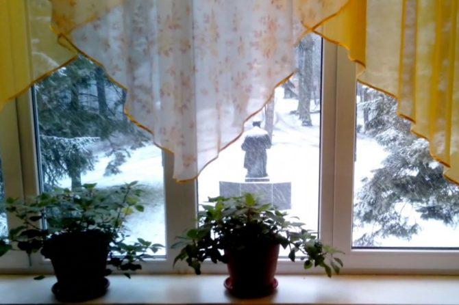 Первый снег в санатории «Советск»